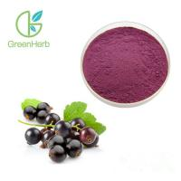 China Deep Purple Red Black Currant Extract Powder Health Food Supplements UV Test for sale