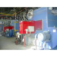 China Horizontal Hot Oil Fired Electric Thermal Oil Boiler With High Heat Efficient for sale