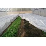 China PP Coreless Spunbond Agriculture Non Woven Fabric Water Resistant Lightweight for sale