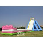 China 10m High Giant Inflatable Hippo Water Slide For Adult From China Inflatable Manufacturer for sale