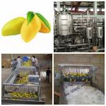 Paste Processing Line Mango Processing Line Plant In PET Glass Packing for sale
