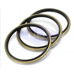 High - Temperature Rubber NBR Dust Seal DKB Diameter d20-300mm OEM for sale