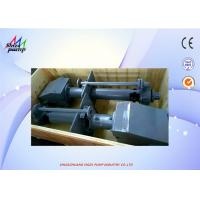 40PV - SP Centrifugal Vertical Submerged Pump , Sand Pumping Vertical Slurry Pump for sale