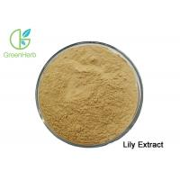 China Factory Supply Natural White Lily Bulb Extract Powder 10:1 for sale
