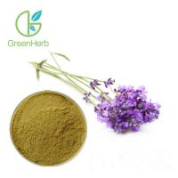 China Lavandula Angustifolia Natural Lavender Extract Powder UV Test Method for sale