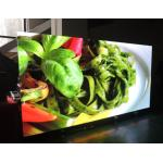 China Full Color HD Indoor Advertising LED Display Small Pitch P2.5 LED Video Wall for sale