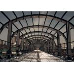 Customized Size Poultry Farm Steel Structure Sheds With Lighting for sale