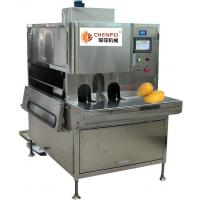 China Compact Structure Mango Processing Line Paste Processing Line 5 Tons Per Day supplier