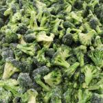 China Broccoli 5cm In Bulk Packing 1kgs IQF Frozen Vegetables for sale