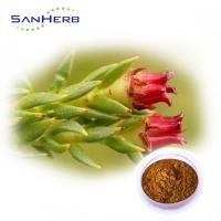 Pincredit Supply Rhodiola Rosea Powder Extract Water Soluble Salidroside
